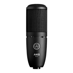 AKG  General Purpose Studio Recording Cardioid Microphone (P120)